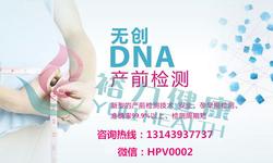 无创DNA1