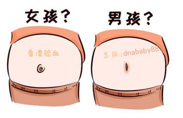 香港验血 (5)